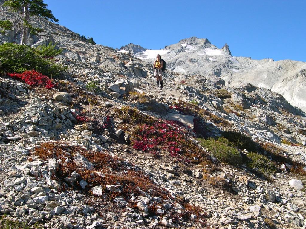 Southeast Ridge (Mount Daniel)