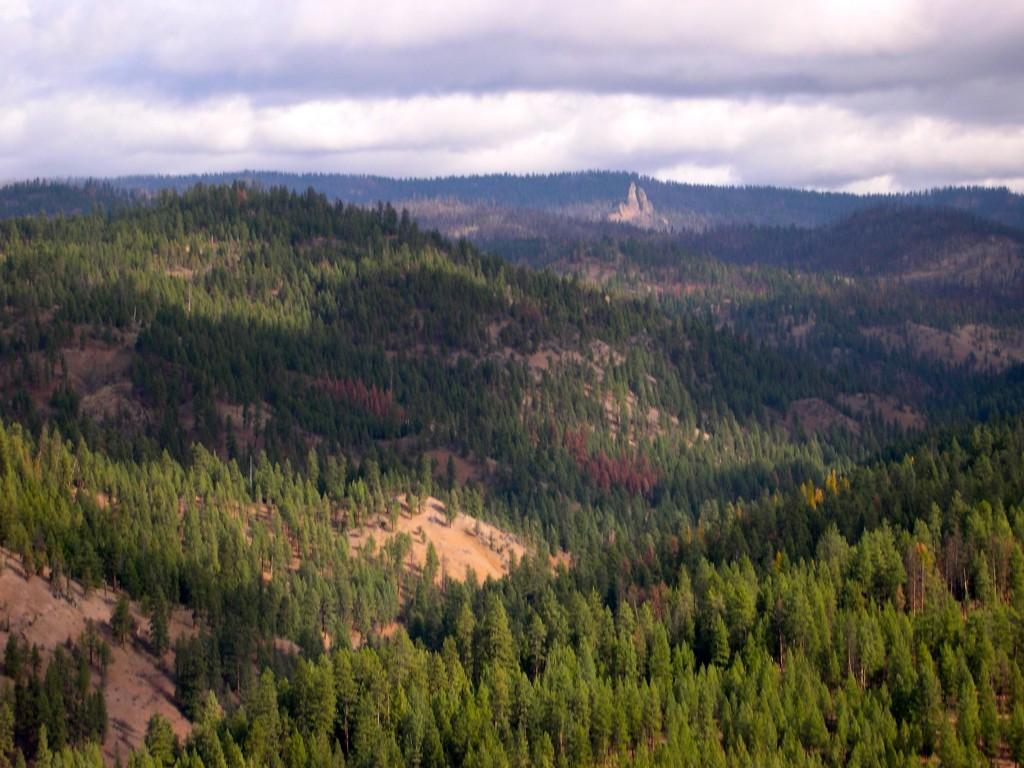 Northeast Face (Steins Pillar)