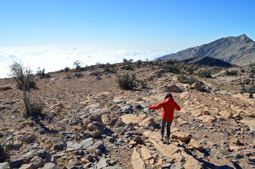 Saiq Plateau