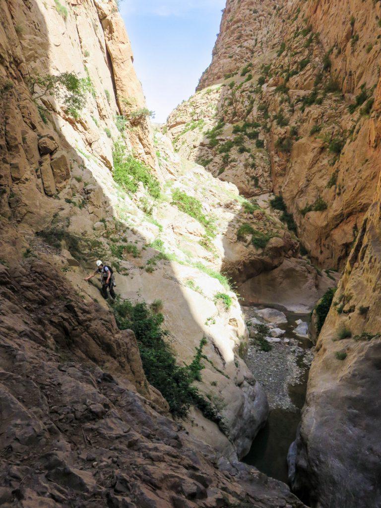 l'Allumeur Du Reve Berbere